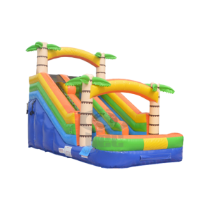 Adventure-Island-Slide-Resized-600x600watermark